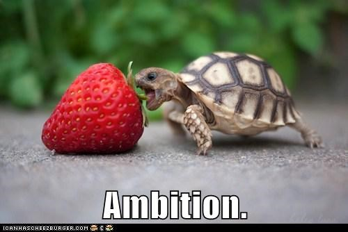 Power play at work, ambition