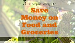 groceries shopping, saving money on food, saving on groceries