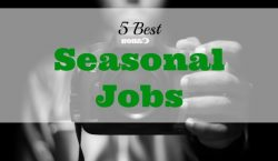 seasonal jobs, part-time jobs, side hustle