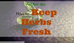 keep herbs fresh, basil, fresh herbs, herbs, kitchen tips, kitchen herb