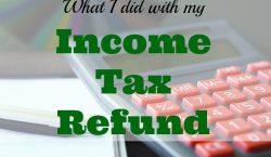 income tax refund, tax refund, extra money, Net worth update , net worth, financial success, financial health