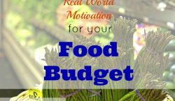 food budget, grocery budget, meal prep, grocery budget for 2, high cost of fresh produce, produce, cheap produce, expensive produce