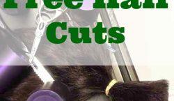 free hair cuts, hair cuts for cheap, salon quality hair cuts