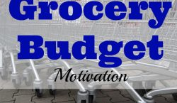 Grocery budget, grocery budget motivation, grocery shopping