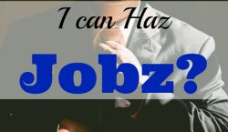 i can haz jobz? excellent benefits, interviewing, negotiating, compensation, benefits, new job, job interview