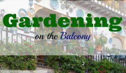 Gardening, grow your own, balcony garden, balcony gardening