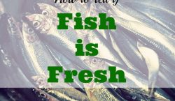fresh fish, fish market, live catch, fish, salmon, halibut, sea bass