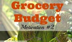 grocery, grocery budget, grocery motivation