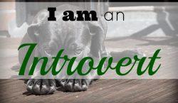 introvert, extrovert, definition of introvert