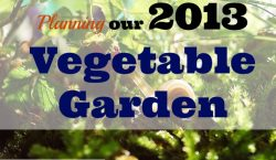 Garden recap, Vegetable Garden, grow your own, vegetables, gardening, community planting