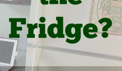 Replace the Fridge, refrigerator problems, ref, refrigerator, freezer, home appliance