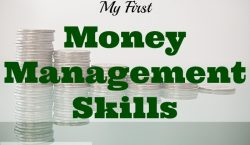 money management skills, finances, handling money, Net worth update, net worth