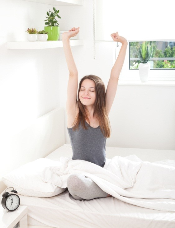 Sleep Number vs. Personal Comfort: A Comparison - The ...