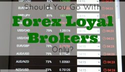 forex broker, stock market, stock exchange, investing, investment, investor