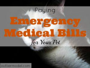 pet medical bill, emergency pet bill, pet expenses, taking care of your pet