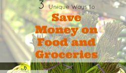groceries shopping, saving money on food, saving on groceries