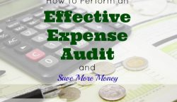 expense audit, saving money, budgeting finances