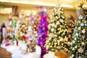 christmas-trees-1823943_1920